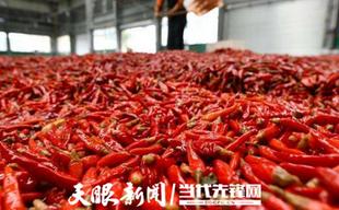 贵州现代农业产业新体系,加工转化,提高附加值